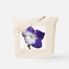 Park Avenue Blue Tote Bag