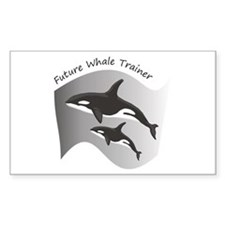Future Whale Trainer Rectangle Stickers