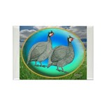 Guineas On Opal Rectangle Magnet (100 pack)