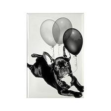 Happy Birthday French bulldog Rectangle Magnet (10