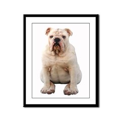 Bulldog 4 Framed Panel Print