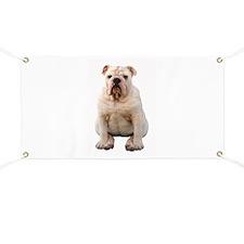 Bulldog 4 Banner