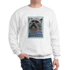 Funny Kitty art Sweatshirt