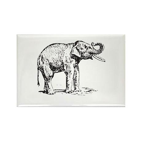 Rectangle Magnet (100 pack) elephant