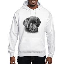 Labrador Puppy Hoodie