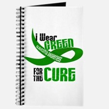 I Wear Green 33 (Glaucoma Cure) Journal
