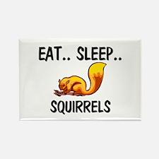 Eat ... Sleep ... SQUIRRELS Rectangle Magnet