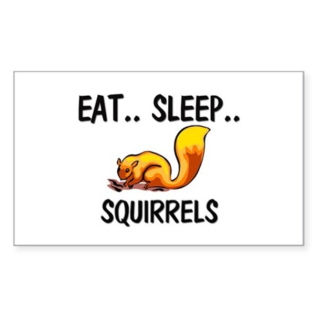 Eat ... Sleep ... SQUIRRELS Rectangle Sticker