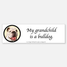 Grandchild is a Bulldog Bumpersticker