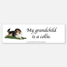 My Grandchild is a Collie Bumper Bumper Bumper Sticker