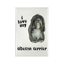 Tibetan Terrier Lover Rectangle Magnet