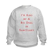 Big Deal In Sanctuary Sweatshirt