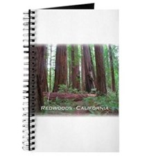 Cute Redwood national park Journal
