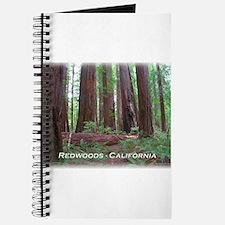 Unique Redwoods Journal
