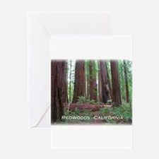 Cute Redwoods california Greeting Card