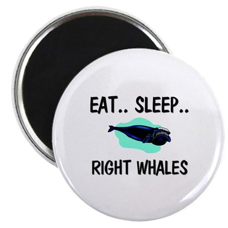 Eat ... Sleep ... RIGHT WHALES Magnet
