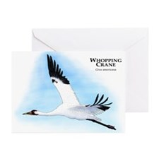 Whooping Crane Greeting Cards (Pk of 10)