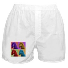 Pop Poodle Boxer Shorts