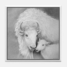 White Buffalo & Calf ~ Tile Coaster