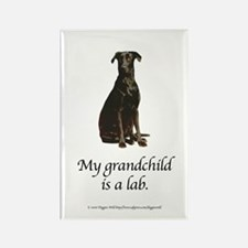 My Grandchild is a Lab Rectangle Magnet
