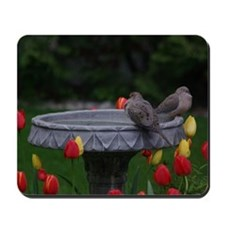 Spring Doves Mousepad