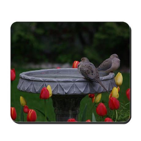 Spring Doves Mousepad