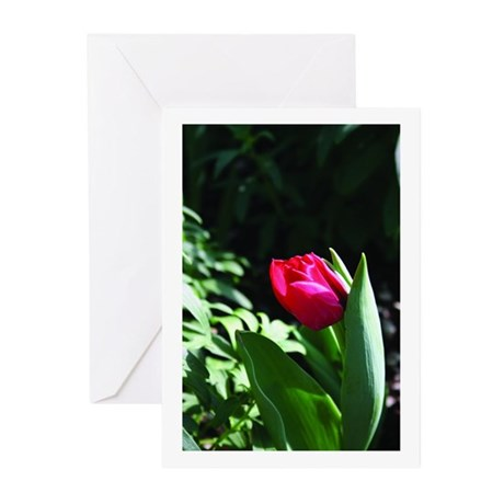 redrose Greeting Cards