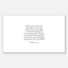 EXODUS 29:41 Rectangle Decal