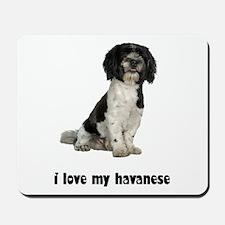 Havanese Love Mousepad