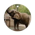 African Elephant 002 Ornament (Round)