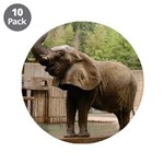 """African Elephant 002 3.5"""" Button (10 pack)"""