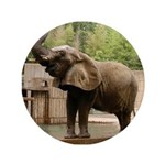 """African Elephant 002 3.5"""" Button"""