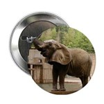 """African Elephant 002 2.25"""" Button"""