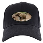 African Elephant 002 Black Cap
