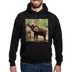 African Elephant 002 Hoodie (dark)