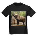 African Elephant 002 Kids Dark T-Shirt
