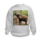 African Elephant 002 Kids Sweatshirt