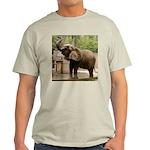 African Elephant 002 Light T-Shirt