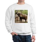 African Elephant 002 Sweatshirt
