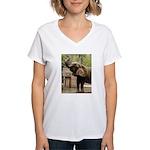 African Elephant 002 Women's V-Neck T-Shirt