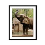 African Elephant 002 Framed Panel Print
