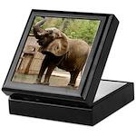 African Elephant 002 Keepsake Box