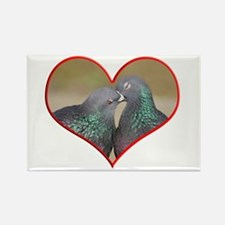 Pigeon Romance Rectangle Magnet
