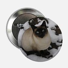 """Siamese Snow Cat 2.25"""" Button"""