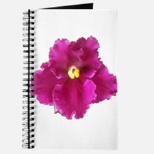 Beautiful Red AV Cutout Journal