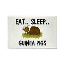 Eat ... Sleep ... GUINEA PIGS Rectangle Magnet