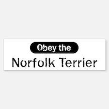 Obey the Norfolk Terrier Bumper Bumper Bumper Sticker
