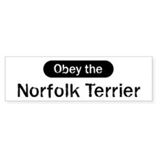 Obey the Norfolk Terrier Bumper Bumper Sticker