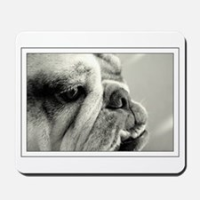 English Bulldog Closeup Mousepad
