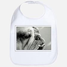 English Bulldog Closeup Bib